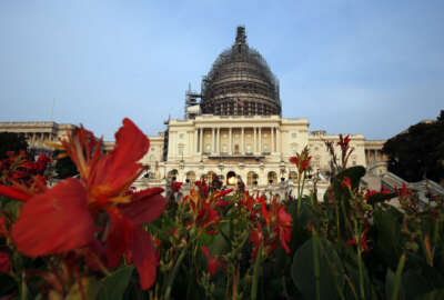 The west front of the U.S. Capitol is seen under repair, Wednesday, Sept. 2, 2015 in Washington. Congressional proceedings are routinely convoluted, often inscrutable and sometimes bizarre. Even by those standards, the upcoming vote on the Iran nuclear deal stands out as particularly bewildering. (AP Photo/Alex Brandon)