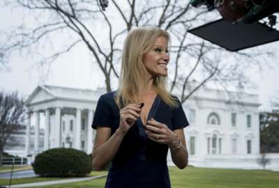 President Donald Trump's adviser Kellyanne Conway gets ready to go on television outside the White House, Sunday, Jan. 22, 2017, in Washington. (AP Photo/Manuel Balce Ceneta)