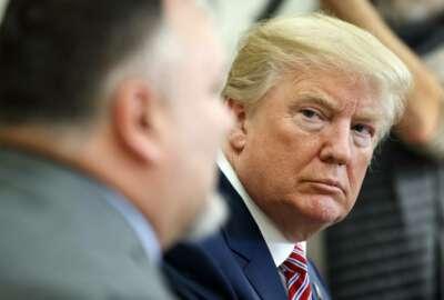 Donald Trump, Don Bouvet