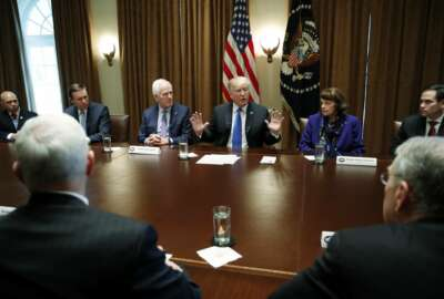President Donald Trump speaks in the Cabinet Room of the White House, Wednesday, Feb. 28, 2018 in Washington, during a meeting with members of Congress to discuss school and community safety. (AP Photo/Carolyn Kaster)