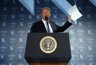 President Donald Trump speaks at the National Federation of Independent Businesses 75th anniversary celebration, Tuesday, June 19, 2018, in Washington. (AP Photo/Evan Vucci)