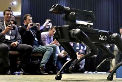 In this Thursday, May 24, 2018, photo, a Boston Dynamics SpotMini robot is walks through a conference room during a robotics summit in Boston. It's never been clear whether robotics company Boston Dynamics is making killing machines, household helpers, or something else entirely. But the secretive firm, which for nine years has unnerved viewers with YouTube videos of robots that jump, gallop or prowl like animal predators, is starting to emerge from a quarter-century of stealth. (AP Photo/Charles Krupa)