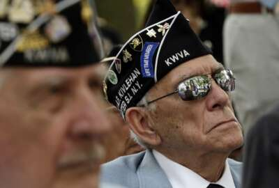 A Korean War veteran listens to former Congressman Charles Rangel at the Korean War memorial at Battery Park in New York, Friday, July 27, 2018. Korean War veterans have something extra to celebrate as they mark the 65th anniversary of the armistice that ended combat. (AP Photo/Stephen Groves)