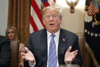 President Donald Trump speaks during his meeting with members of his cabinet in Cabinet Room of the White House in Washington, Wednesday, July 18, 2018. (AP Photo/Pablo Martinez Monsivais)