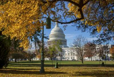 In this Nov. 8, 2018 photo, the Capitol is framed amid colorful autumn leaves in Washington. Congressional aides and advocacy groups say lawmakers are close to an agreement on legislation designed to boost rehabilitation efforts for federal prisoners and give judges more discretion when sentencing some non-violent offenders. Aides from both parties say moving ahead depends largely on President Donald Trump. (AP Photo/J. Scott Applewhite)