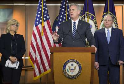 Kevin McCarthy, Steve Scalise, Liz Cheney