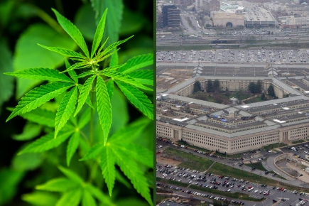 Owning marijuana stocks may skunk your security clearance or chances