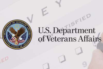 Department of Veterans Affairs survey