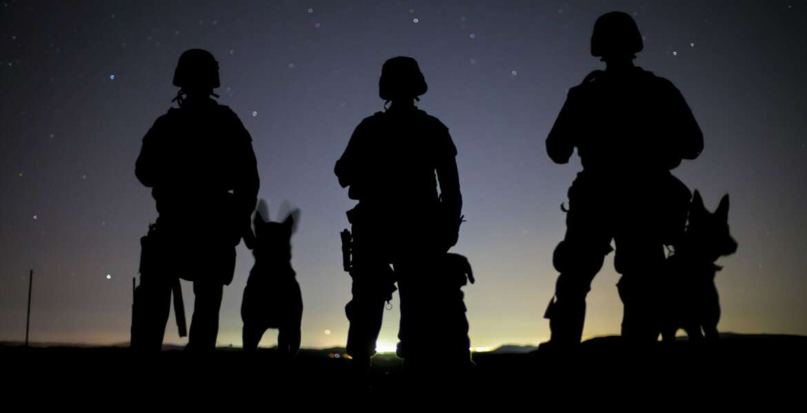 U.S. Marine Corps K-9 handlers currently assigned to the Military Working Dog (MWD Team Deployment Training course pose for a photo with their MWD while conducting detection training on the Yuma Proving Ground (YPG), Feb. 25, 2019. The MWD Team Deployment Training Course is a three-week long course where MWD Handlers from all three Marine Expeditionary Forces advance their dog team capabilities by focusing on teaching teams to become effective and lethal assets. (U.S. Marine Corps photo by Lance Cpl. Joel Soriano)