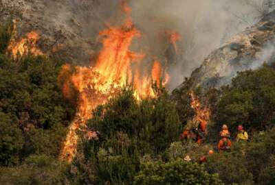FILE - In this Sept. 2, 2017, file photo, a crew with California Department of Forestry and Fire Protection (Cal Fire) battles a brushfire on the hillside in Burbank, Calif. California regulators on Tuesday. Dec.31, 2019 said that they have streamlined the state's permit process to make it faster to approve tree-thinning projects designed to slow massive wildfires that have devastated communities in recent years. (AP Photo/Ringo H.W. Chiu, file)
