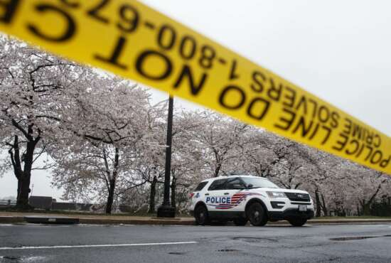 A Washington D.C. Metropolitan Police vehicle is parked on the other side of a tape police line along the Tidal Basin as cherry blossoms cover the trees, in Washington, Monday, March 23, 2020. As Washington, D.C. continues to work to mitigate the spread of the coronavirus (COVID-19), Mayor Muriel Bowser extended road closures and other measures to restrict access to the Tidal Basin, a main tourist attraction. (AP Photo/Carolyn Kaster)