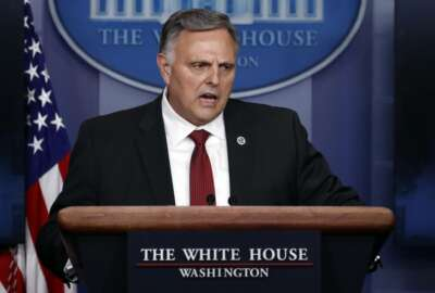 Bill Bryan, head of science and technology at the Department of Homeland Security, speaks about the coronavirus in the James Brady Press Briefing Room of the White House, Thursday, April 23, 2020, in Washington. (AP Photo/Alex Brandon)