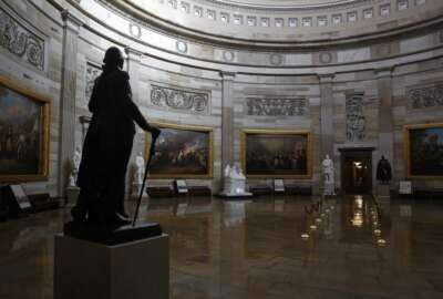 FILE - In this April 9, 2020, file photo statue of President George Washington looks over an empty Capitol Rotunda on Capitol Hill in Washington. The nation's capital, like most of the nation itself, is largely shuttered. (AP Photo/Patrick Semansky, File)