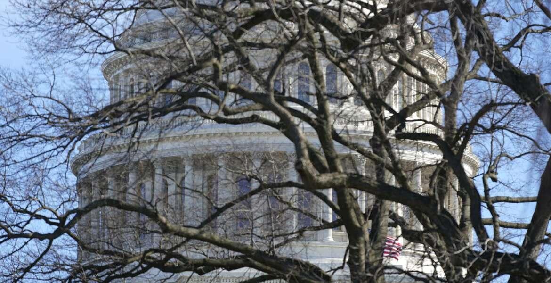 The U.S. Capitol dome stands above bare tree branches, Saturday, Jan. 9, 2021, in Washington. (AP Photo/Patrick Semansky)