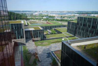 The new DHS headquarters, which GSA is managing, includes green roofs, and other green buildings features. green roofs, green buildings, St Elizabeths, GSA