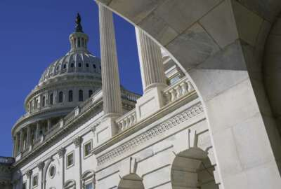 Sun shines on the U.S. Capitol dome, Tuesday, March 2, 2021, in Washington. (AP Photo/Patrick Semansky)