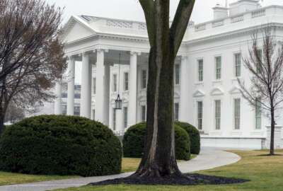 In this March 18, 2021 photo, the White House is shown in Washington. Five White House staffers have been fired because of their past use of drugs, including marijuana. White House press secretary Jen Psaki said Friday