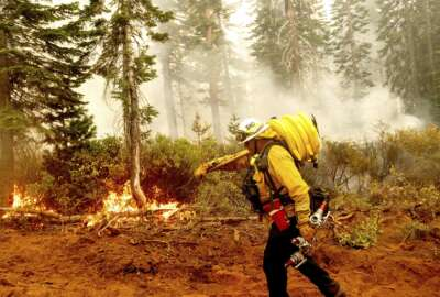 FILE - In this Sept. 14, 2020 file photo Cal Fire Battalion Chief Craig Newell carries a hose while battling the North Complex Fire in Plumas National Forest, Calif. U.S. wildfire managers are considering shifting from seasonal firefighting crews to full-time, year-round crews to deal with what has become a year-round wildfire season and to make wildland firefighting jobs more attractive by increasing pay and benefits. U.S. Forest Service Deputy Chief Christopher French, testifying before the U.S. Senate Committee on Energy and Natural Resources, said Thursday, June 24, 2021 agencies will seek to convert at least 1,000 seasonal wildland firefighters to permanent, full-time, year-round workers. (AP Photo/Noah Berger,File)