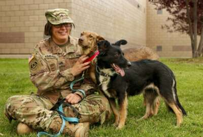 Sgt. Corina Kimball, an intelligence noncommissioned officer from Great Falls, Mont., with the 652nd Regional Support Group, sits with her dogs Cinnamon, left, and Pepper, right, Sept. 14, 2020 at Fort William Henry Harrison, Helena, Mont. The pair became two of the first rescue dogs from Poland when they reunited with Kimball Aug. 2, 2020 in Seattle, Wash. (Master Sgt. Ryan Matson)