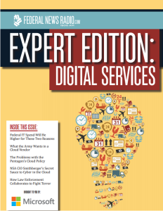Digital Services eBook cover